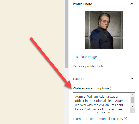 Location of the excerpt text box in BSD WordPress Team and User Profiles
