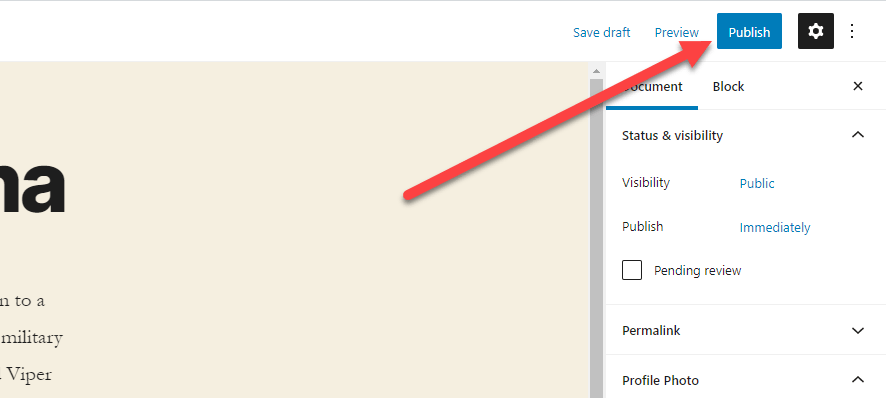 Location of the publish button when creating a new BSD WordPress Team and User Profile
