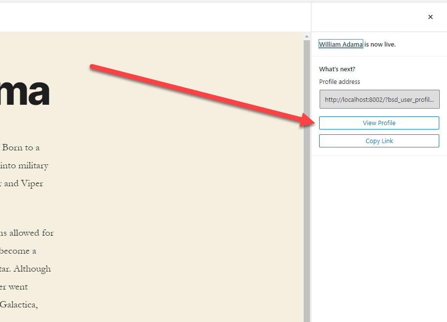 View Profile button after publishing a new BSD WordPress Team and User Profile